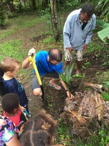 Planting Coconuts